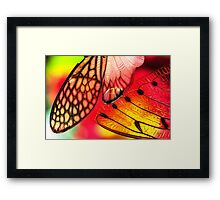 A Confusion of Angels Framed Print