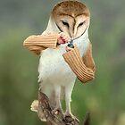 A Barn Owl smoking a Bowl by Felfriast