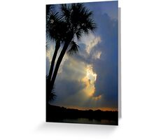 tropical rays Greeting Card