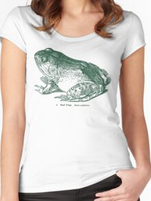 Bull Frog Vintage Woodcut Style Illustration Women's Fitted Scoop T-Shirt