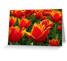 Fire flowers Greeting Card