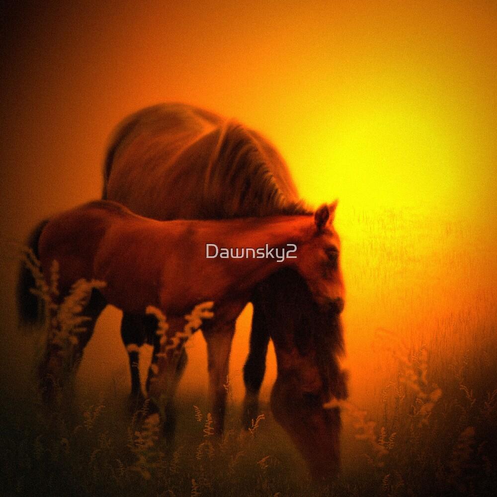 Sundown by Dawnsky2
