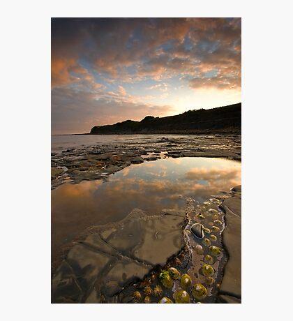 Jurrasic coast Photographic Print
