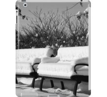 Snow Cushions iPad Case/Skin