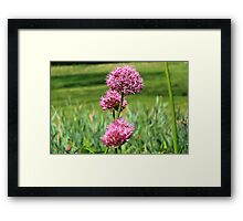 Blow of the Wind  Framed Print