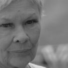 Dame Judi Dench number 6 by Tony Hadfield