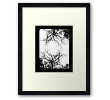 twin trees  Framed Print