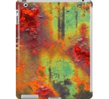Colours of a Rusty Sign iPad Case/Skin
