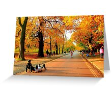 Colours of Automn !! Greeting Card