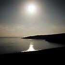 Moonlight by Alexander Isaias