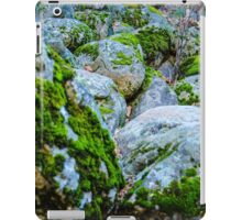 Love Experts  iPad Case/Skin