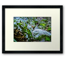 Love Experts  Framed Print