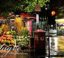 Melbourne by Yngve Andrei Skarphedinsson