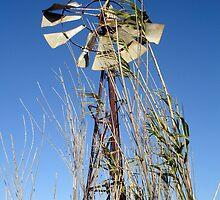 Windmill #2 wall art by elizabethrose05