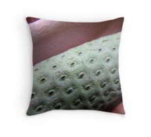 from times past fruit 1 Throw Pillow