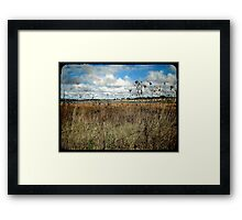 Thunderbolt Country Framed Print