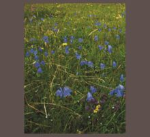 A sea of Harebells, Rossbeg, Co Donegal Kids Clothes