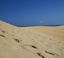 Dunes by Shane Cowlishaw