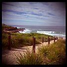 holga madness.....sea view with shark bait by Juilee  Pryor