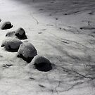 Snow Rocks by elasita