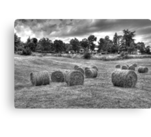Hay bales in Tuscany Canvas Print