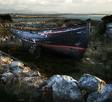 Field Boat by David Robinson