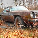 Z28 Resting Place by James Brotherton