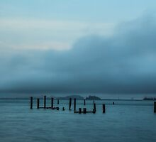 Pilings off the Sausalito Shore by Nicole Petegorsky