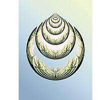 Art deco shell Photographic Print