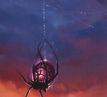Arachlight by Adrianne Tamar Arachne
