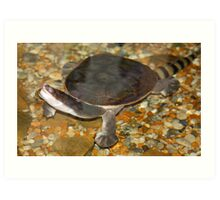 Snake-neck turtle Art Print
