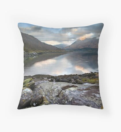 Sprited Landscape Throw Pillow