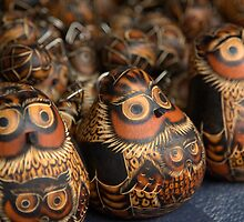 unblinking owls by Ryan Bird
