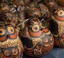 unblinking owls by theblackazar
