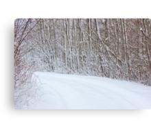 Winter's Spell I Canvas Print