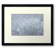 Winter's Spell II Framed Print