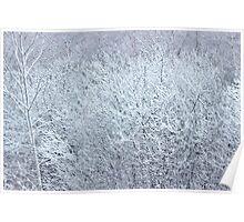 Winter's Spell II Poster