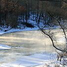Sub-zero Morning At Sandy Creek by Geno Rugh