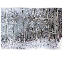 Winter's Spell IV Poster