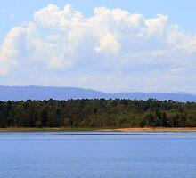 Yan Yean Reservoir Victoria Australia by Pauline Tims