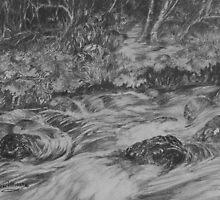 Rock Creek by Lynne Wright