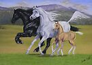 Kirstie's Horses by louisegreen