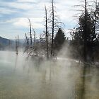 Yellowstone  by ranaman