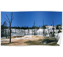#391  Landscape At Yellowstone Park Poster