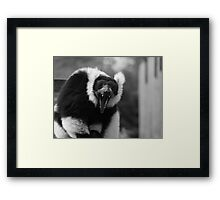 Yawn - black & white Framed Print