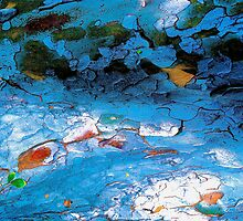 The Pondering Pool by Julie Marks