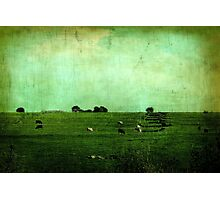 The Green Yonder Photographic Print