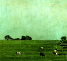 The Green Yonder Sticker