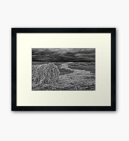 """""""Haystream"""" Framed Print"""