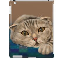 Brown Furry Cat with Honey Eyes Lying Down and Staring Directly at You iPad Case/Skin